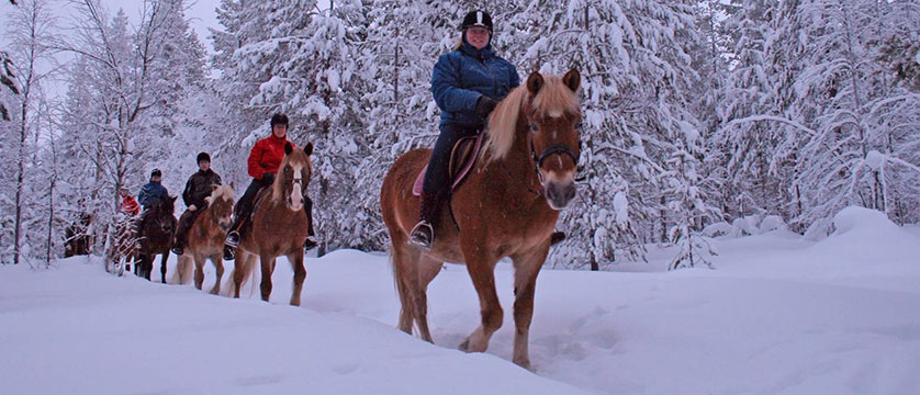 finland_lapland_levi_icelandic-horse-riding.jpg